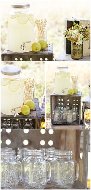 lemongardenpartylast
