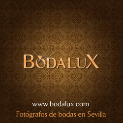 bodalux-google-plus