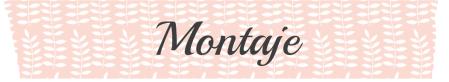 montaje (Conflicto de mayúsculas y minúsculas)