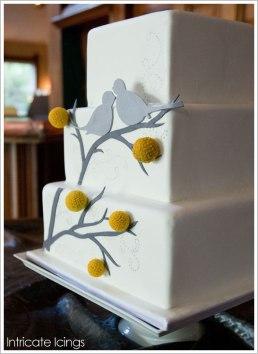 billy_ball_bird_cake